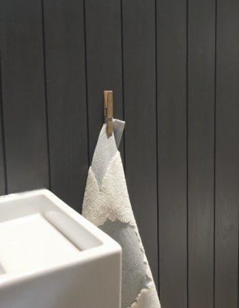 pesuallas ja pyyhekoukku